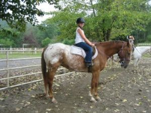 horse camps for kids, sussex county, NJ