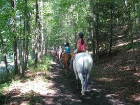 Horseback trail riding lessons, NJ